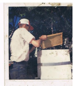 Teri Dad working bees in 1983
